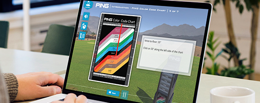 Ways to Use eLearning: PING Case Study Highlight