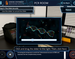 Auburn University: PCR Standard Simulation - PCR Room: DNA