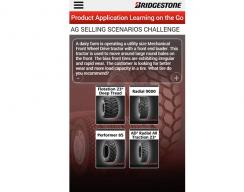 Bridgestone -Mobile Flash Cards