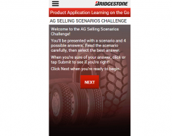 Bridgestone - Selling Scenario