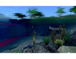 Florida International University - Underwater