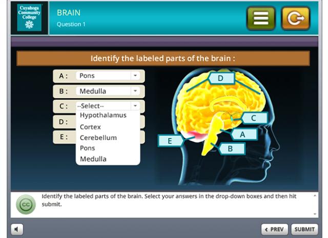 Tri-C 3D Stress Simulation Training - Question 1 Screen